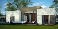 Проект загородного дома Zx111