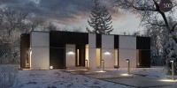 Проект загородного дома ZX116