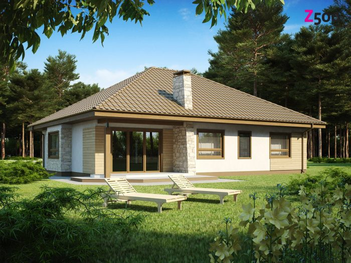 Проект загородного дома Z19