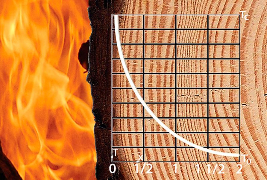 Огнебиозащита древесины